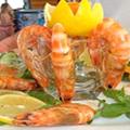 Fisch Abendessen Albanien